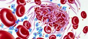 anticoagulation-resource-center