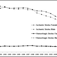Age-adjusted incidence of ischemic and hemorrhagic stroke in the US Medicare population from 1988 to 2008.