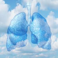 healthy lungs in clean air