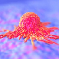 detail of cancer cell