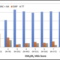 Antithrombotic strategy by CHA2DS2-VASc score. DAP = dual antithrombotic therapy with 2 antiplatelet agents; OAC + AA = dual antithrombotic therapy with an oral anticoagulant plus 1 antiplatelet agent; TT = triple antithrombotic therapy (oral anticoagulation plus dual antiplatelet therapy).