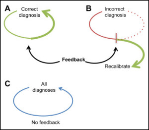 Critical role of feedback in clinical reasoning. (A) Feedback reinforces decisions that lead to correct diagnoses and (B) allows for recalibration when necessary. (C) In the absence of feedback, clinicians may continue inappropriately on a default pathway.